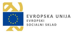 Zaposlitev na področju mladinskega dela v mladinskem sektorju