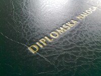 slika_diplomska_naloga