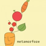 Vabilo na zaključni dogodek projekta »Metamorfoze«