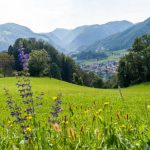 My first impression in Zagorje ob Savi