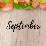 Program Večgeneracijskega centra Zasavje za mesec september