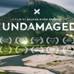 The Undamaged – ogled filma