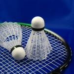 Badminton turnir dvojic