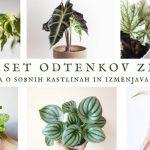 50 odtenkov zelene